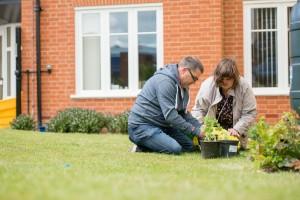 Heather gardening