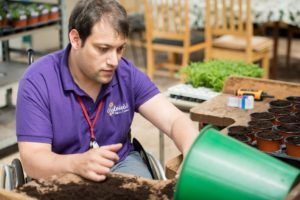Man in purple T-shirt working at garden centre