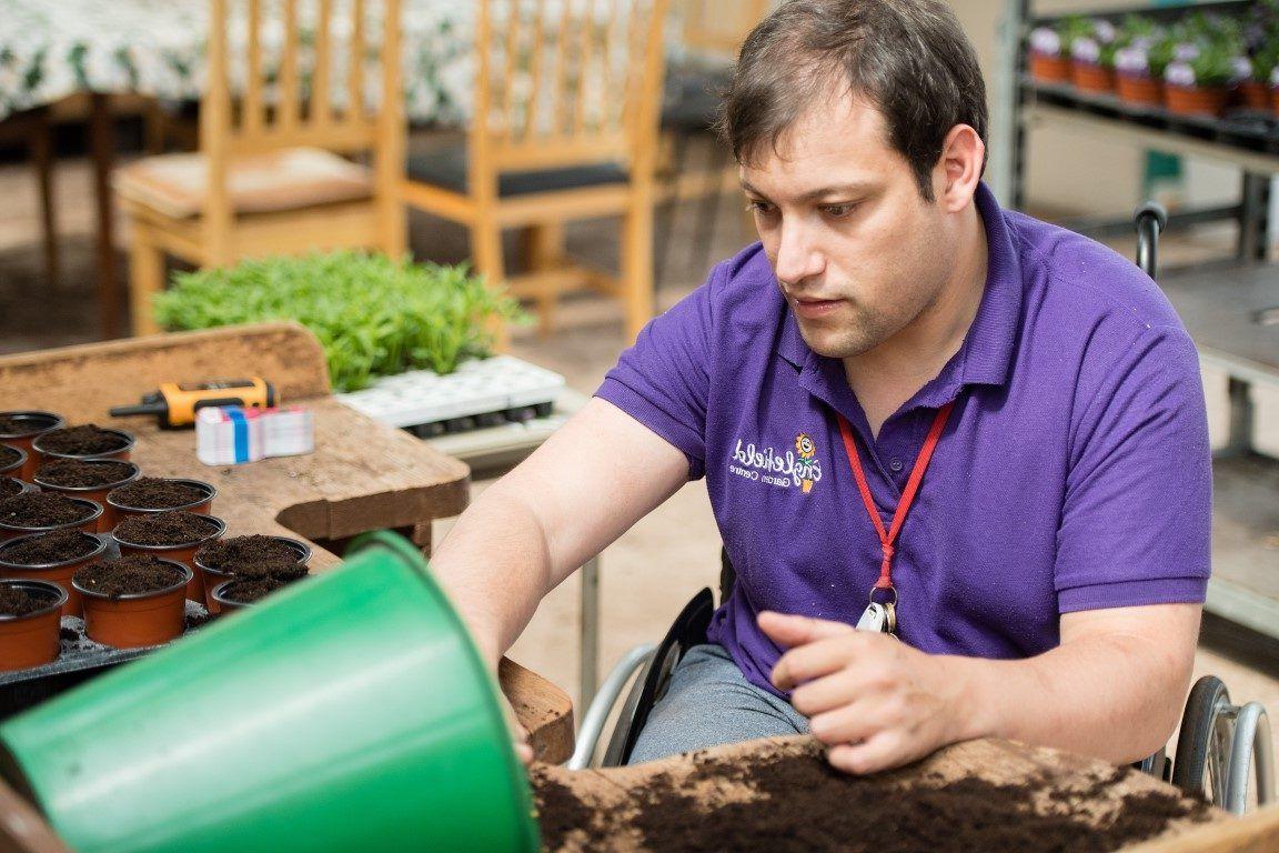 Man in purple T-shirt working at garden centre