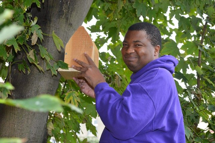 Man in purple top holding a bird box next to a tree